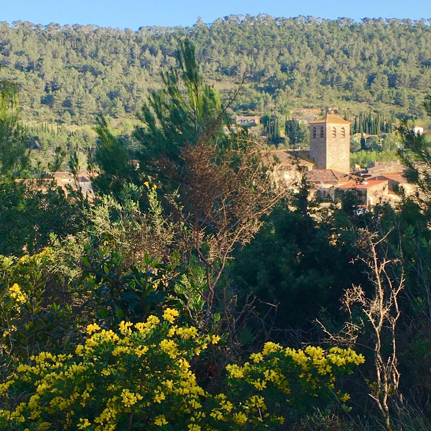 Lagrasse Vue Eglise Saint Michel Gite EstWest